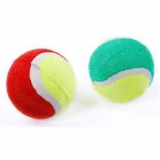 Coppia di palline da tennis